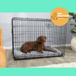 Клетки, вольеры, будки  - Клетка для собак №5, 2 двери, 0