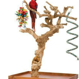 Игрушки и декор  - Насесты из кофейного дерева для крупных видов…, 0