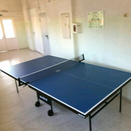 Столы - Теннисный стол WIPS Royal СТ-ПРУ 021, 0