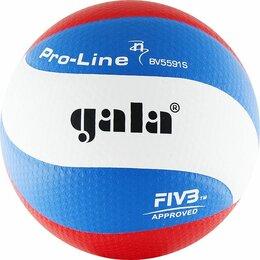 Микрофоны - Gala Pro-Line 10 FIVB, 0