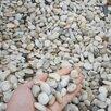 Жемчужная галька по цене 7000₽ - Садовые дорожки и покрытия, фото 1