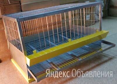 Клетка для кур с яйцесборником и выдвижным поддоном по цене 7990₽ - Клетки и домики, фото 0