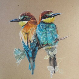 Картины, постеры, гобелены, панно - Золотистые щурки. Сухая пастель. Птица,природа,яркий, картина, 0