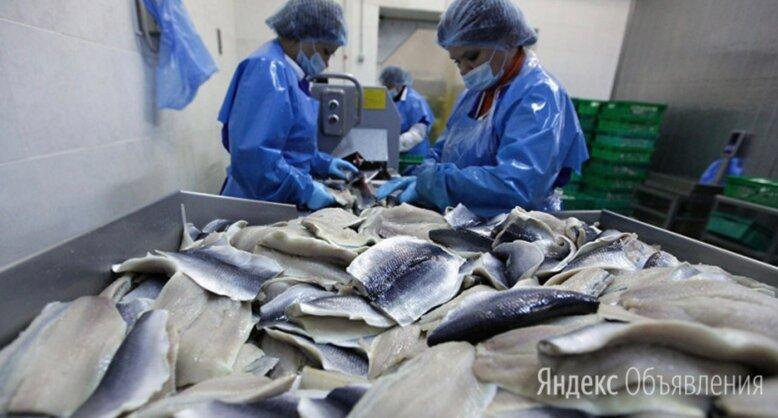 теплицы рыбное рязанская область вакансии