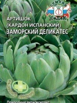 Семена - Заморский деликатес Артишок испанский (Кардон)…, 0