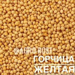 Семена - Горчица сарептская желтая, 0