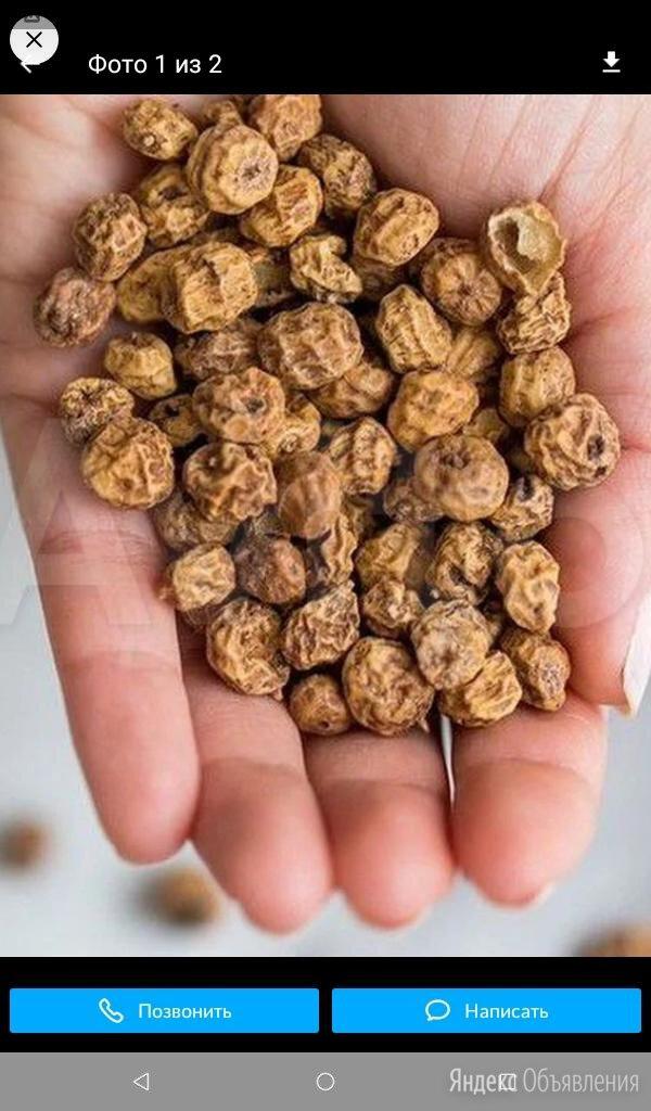 Чуфа земляной миндаль тигровый орех по цене 50₽ - Семена, фото 0