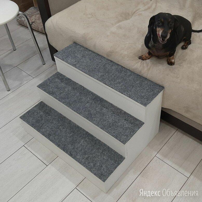 Лестница для животных по цене 3000₽ - Прочие товары для животных, фото 0