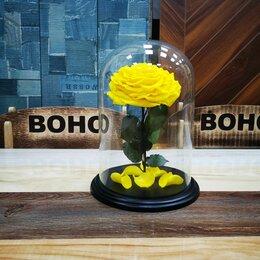 Цветы, букеты, композиции - Роза в колбе Люкс бутон 15 см. , 0