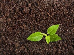 Удобрения - Плодородная земля, 0