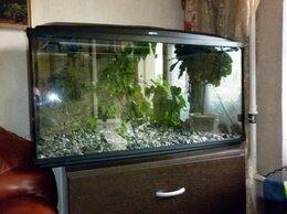 Аквариумы, террариумы, тумбы - Аквариум Aquael 200 литров с объёмным фоном, 0