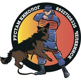 Услуги для животных - Дрессировка собак профессионально Челябинск кинолог, 0