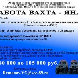 Специалисты - Специалист ответственный за безопасность дорожного движения (БДД), 0