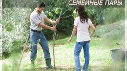 Помощницы по хозяйству - Семейная пара. КП Бенилюкс, 0