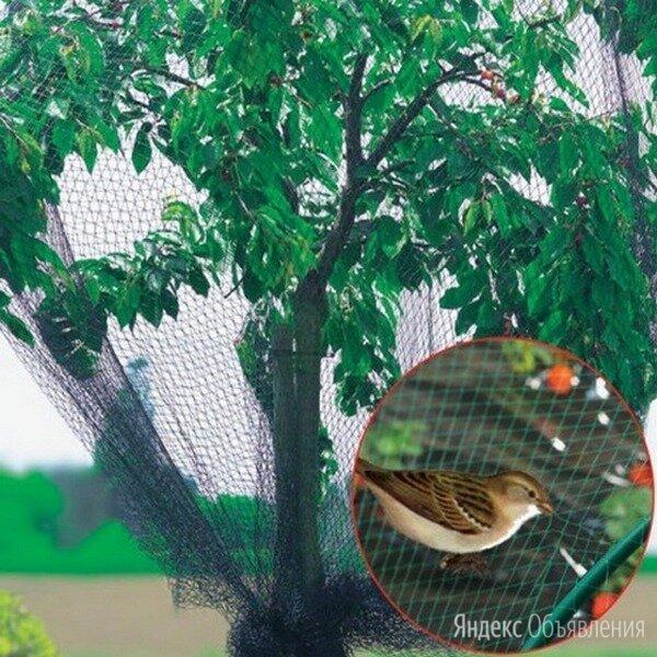 Сетка от птиц на кусты по цене 700₽ - Отпугиватели и ловушки для птиц и грызунов, фото 0