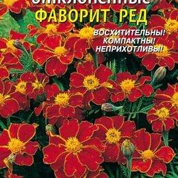 Семена - Бархатцы отклоненные Фаворит Ред ПЛ, 0