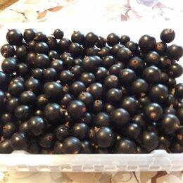 Продукты - Чёрная смородина (ягоды), 0