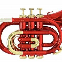 Прочие духовые инструменты - Roy Benson PT-101R Bb  карманная труба , 0