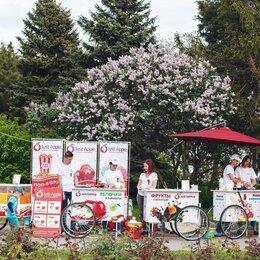 Другое - Готовый бизнес на сладостях для улицы, 0