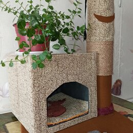 Лежаки, домики, спальные места - Кошкин домик, 0