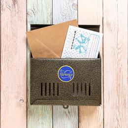 Почтовые ящики - Ящик почтовый без замка (с петлёй), горизонтальный 'Мини', бронзовый, 0