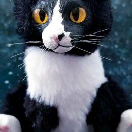 Мягкие игрушки - Милый котик, 0