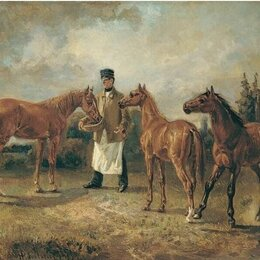 Работа с животными - Помощник по хозяйству(конюх), 0