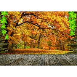 Рисование - Осенний пейзаж Артикул : LAG 4421, 0