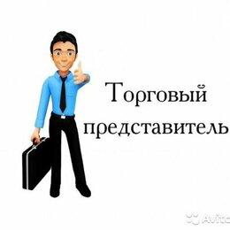 Торговые представители - Торговый представитель (посуда и кухонные принадлежности), 0