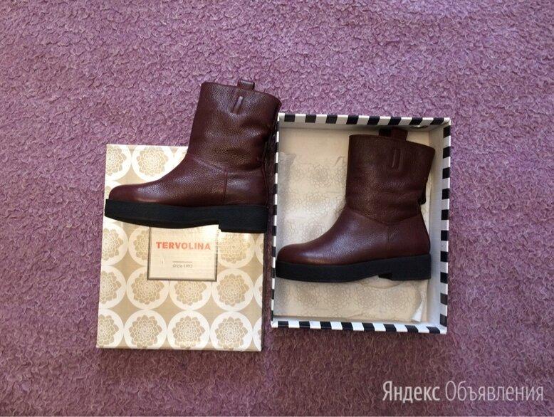 38 размер Tervolina кожаные новые сапоги на широкой подошве по цене 4500₽ - Полусапоги, фото 0