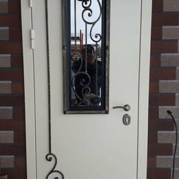 Входные двери - двери входные , 0