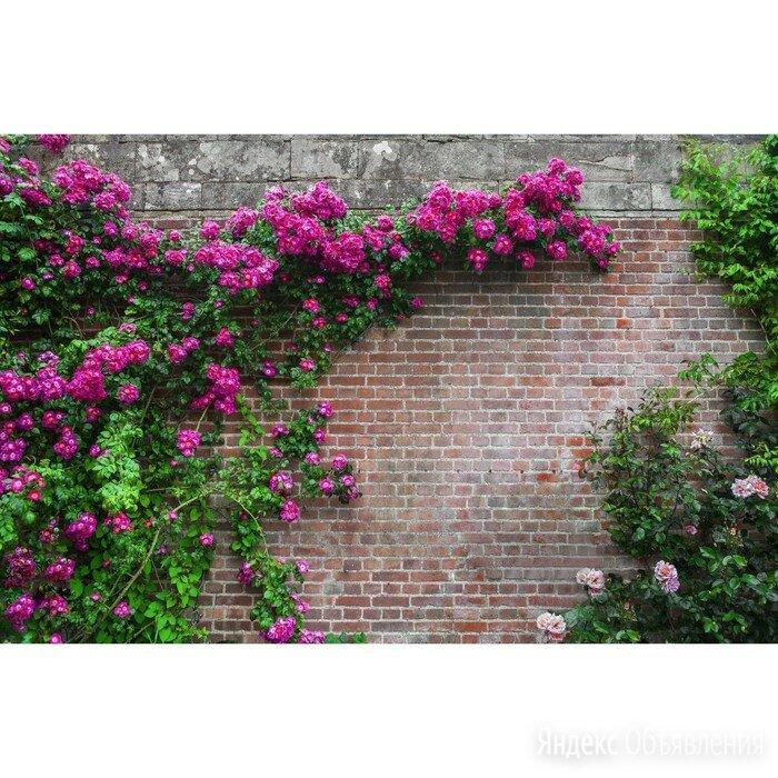 Фотобаннер, 250 x 200 см, с фотопечатью, люверсы шаг 1 м, 'Кирпичная стена' по цене 2263₽ - Заборы, ворота и элементы, фото 0