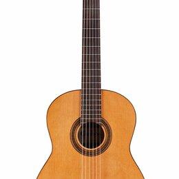 Акустические и классические гитары - CORDOBA IBERIA C5 Limited, 0