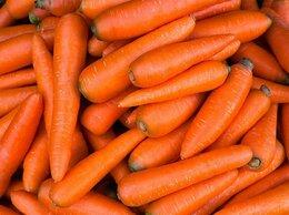 Упаковщик - Упаковщик/фасовщик мытой моркови , 0