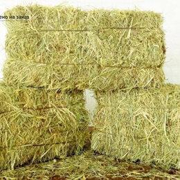 Товары для сельскохозяйственных животных - Сено в тюках, 0
