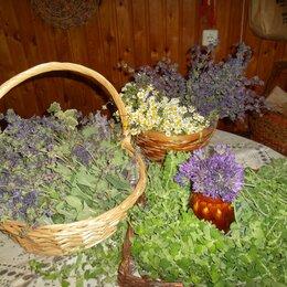Ингредиенты для приготовления напитков - Сушеные травы и сборы, 0