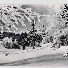 Открытки - Открытка СССР Русская зима 1966 Пахомов чистая Зимний день снежный лес лыжник, 0