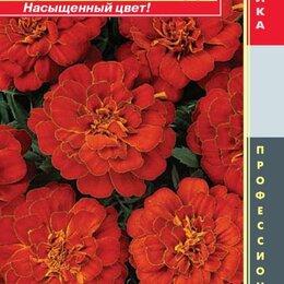 Виниловые пластинки - Бархатцы отклоненные (серия Durango) Дюранго Ред ПЛ, 0