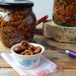 Продукты - Рыжики маслята грибы маринованные, 0