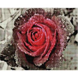 Картины, постеры, гобелены, панно - Роза Артикул : GF 3520, 0