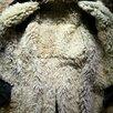 Полушубок овчинный по цене 3500₽ - Дубленки и шубы, фото 0