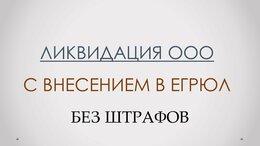Финансы, бухгалтерия и юриспруденция - Помощь в ликвидации ООО ИП НКО, 0