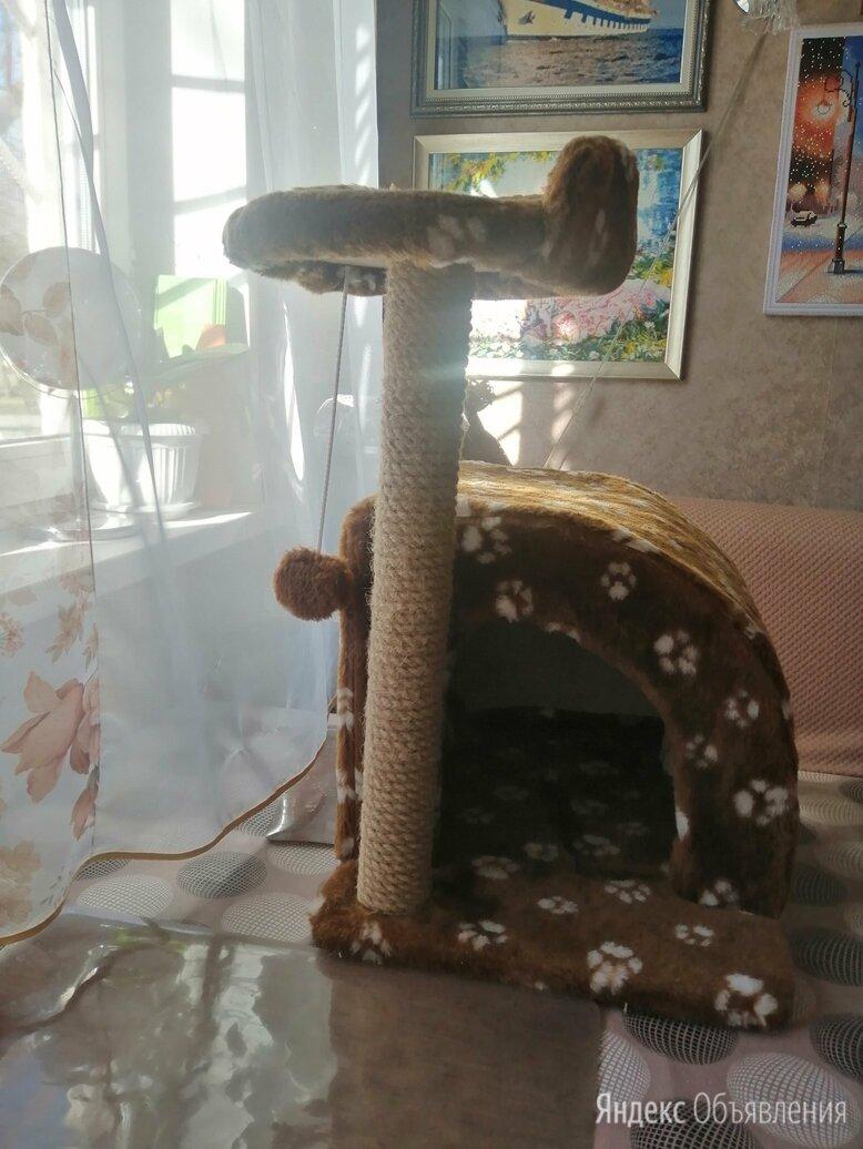 Домик для котят с когтеточкой по цене 1200₽ - Когтеточки и комплексы , фото 0