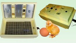 Товары для сельскохозяйственных животных - Инкубатор автоматический 70 яиц для утят цыплят…, 0