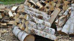 Дрова - Берёзовые дрова в орехово-зуево куровское…, 0