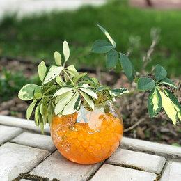 Садовые фигуры и цветочницы - Декоративная почва гель, аквагрунт, 0