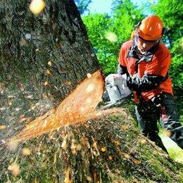 Бытовые услуги - Спил деревьев, удаление пней, расчистка участков. , 0