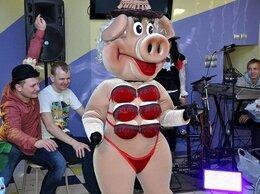 Организация мероприятий - Танец стриптизёрши Свинки на Свадьбу.Юбилей., 0