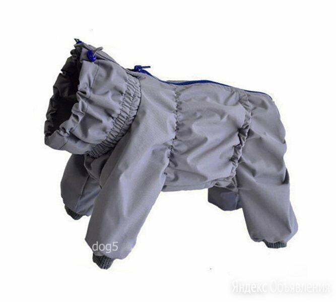 дождевик для собаки закрытый живот для мальчика по цене 1450₽ - Одежда и обувь, фото 0