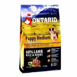 """Корма  - """"Ontario"""" корм для собак. Заказ от 1500 ₽. Доставка по городу бесплатно!, 0"""